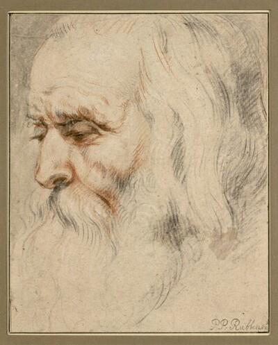 Kopf eines bärtigen alten Mannes mit langem Haar von Anonym