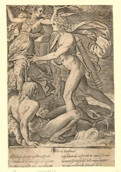 Apollo und Daphne von Giovanni Giacomo Caraglio