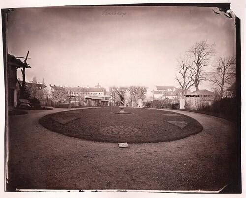 Blick in den Garten beim Haus des Fotografen in der Wiener Theresianumgasse von Ludwig Angerer