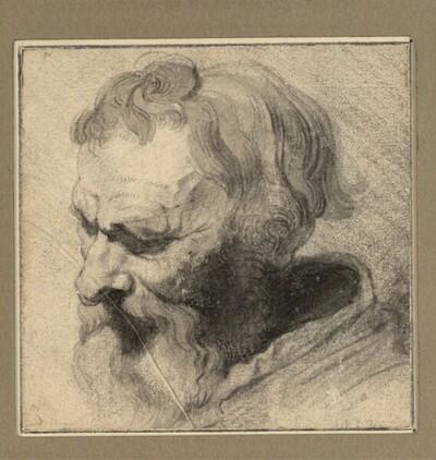 Kopf eines niederblickenden bärtigen Mannes, im Dreiviertelprofil nach links von Anonym