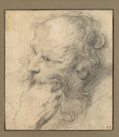 Kopf eines bärtigen Mannes nach links, das Kinn in die Hand gestützt von Anonym