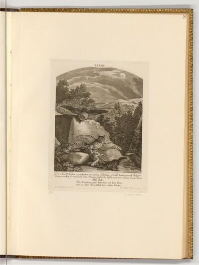 Eulen und Wildkatzen streiten sich um einen Hasen von Johann Elias Ridinger