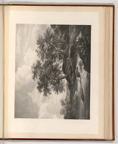 Eichen an einem Gießbach von Jacob van Ruisdael