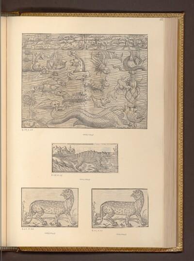 Seeungeheuer; Krokodil und Panther von Hans Rudolf Manuel Deutsch